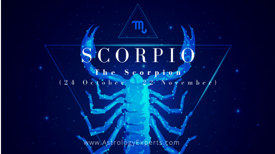 A guide on the Scorpio horoscope which is represented by the Scorpio.