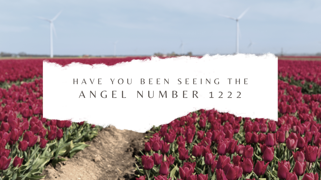 1222 Angel number and the meaning of this blessed number.