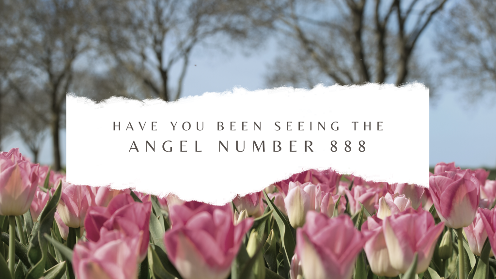 888 Angel number and the meaning of this special number.